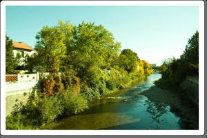 Fluss Schwechat
